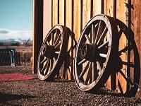 Die Erfindung des Rades - eine der besten Erfindungen der Welt